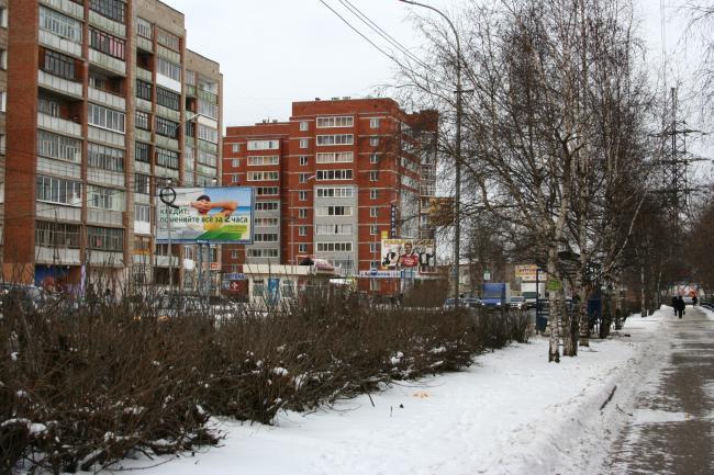 Елизаровых 56