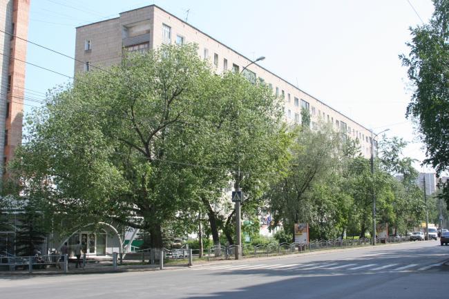 Фрунзе 102