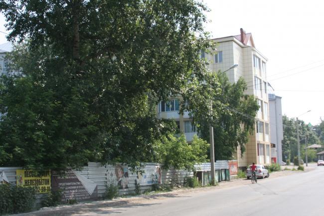 Алтайская 8