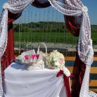 Очень запомнилась свадебная церемония Настюши и Даниила. Много радостных, нежных моментов. Счастья, любви и всего самого хорошего Вам!Скоро ситцевая свадьба....ждем Вас!