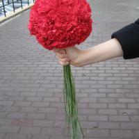 №69 Букет невесты: шар из гвоздик для очаровательной невесты с красным бантом на платье и туфельками в тон гвоздикам