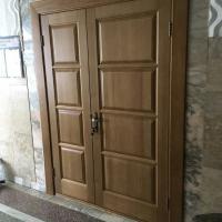 Дустворчатая дверь  полотна 400*800мм